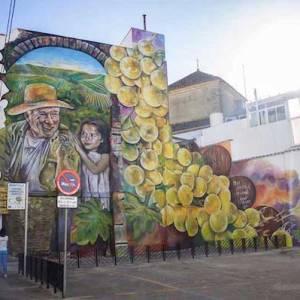 Ruta de las pinturas en Montilla
