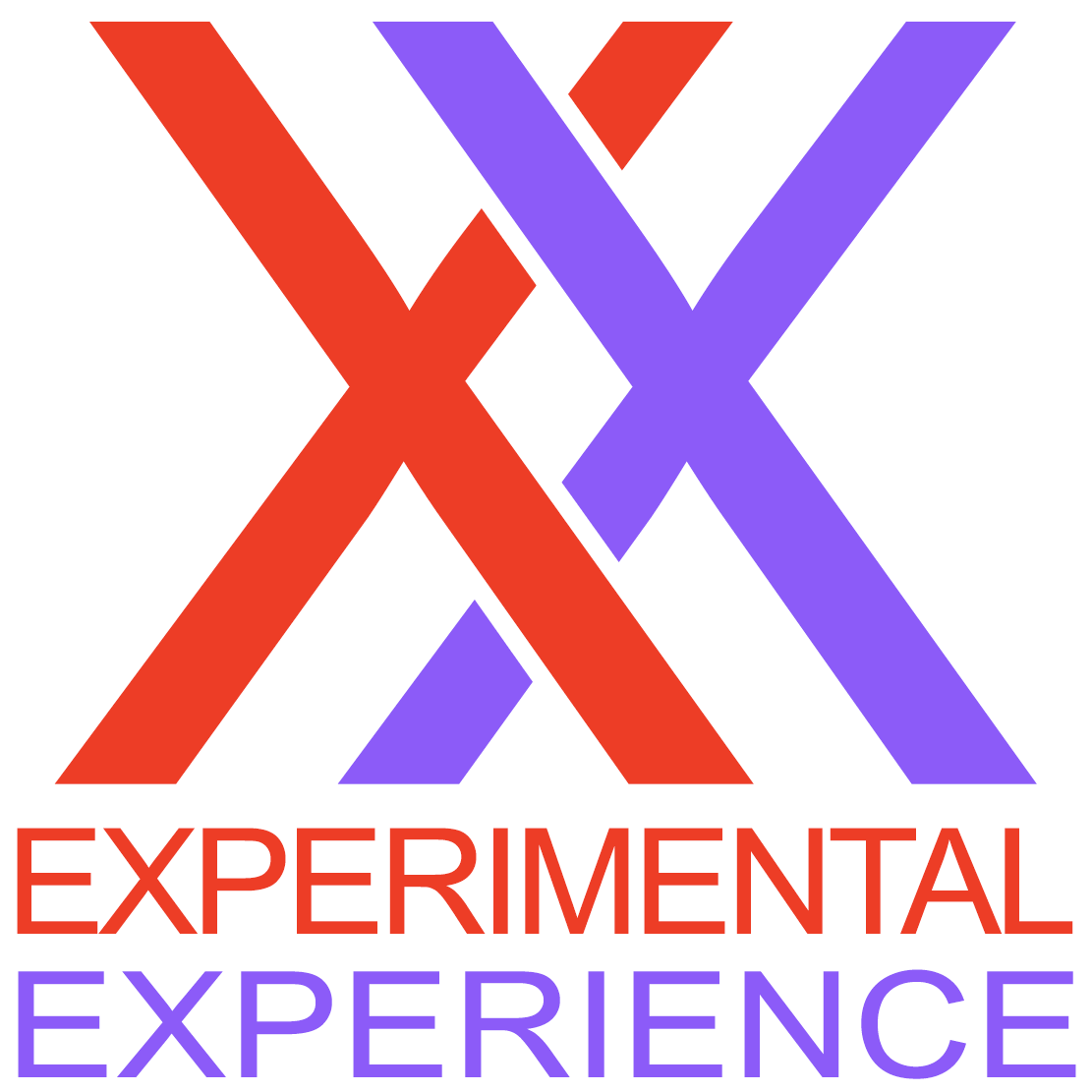 XX - Experimental Experience
