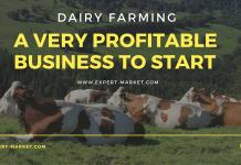 profitable dairy farm business plan