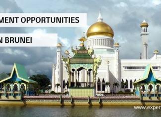 business opportunities brunei
