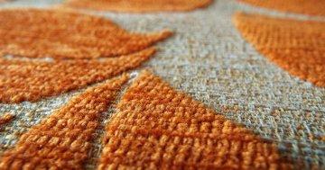 Teppichreiniger - Test und Vergleich