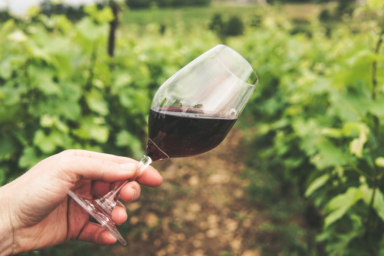 Rotweingläser müssen optimal auf die jeweilige Weinsorte abgestimmt sein, denn nur so ist es möglich, die einzelnen Geschmacksnuancen und Aromen hervorzuheben.