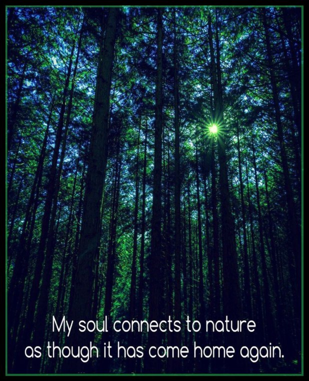 Being One In Nature Is Being One With Yourself