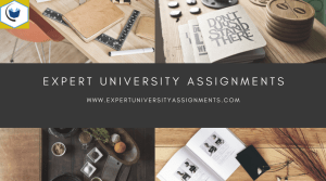 expert university assignments-background