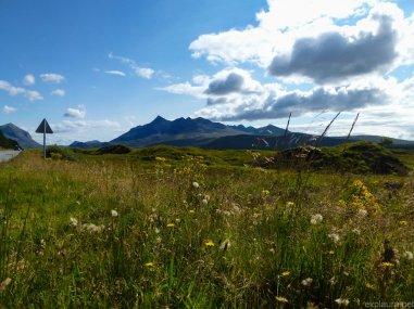scotland5 (7 of 10)