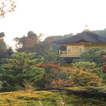kyoto-kinkaku-ji-26