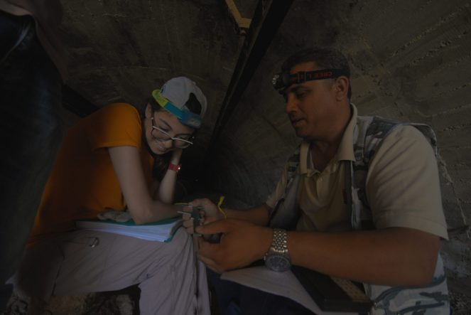 Préparation du matériel utilisé pour les prises de mesure des chauves-souris