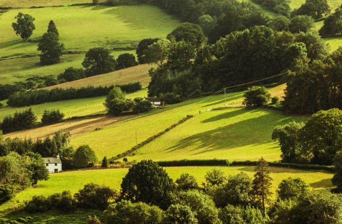 Corridors écologiques: un levier de maintien de la biodiversité