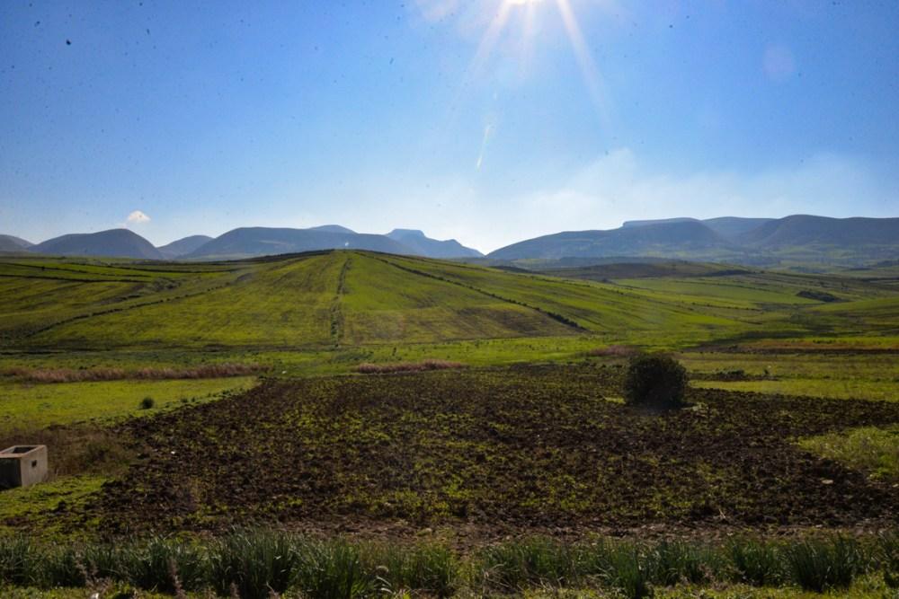 milieu agricole