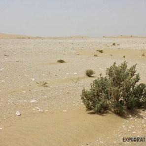 Singing Sand Dunes