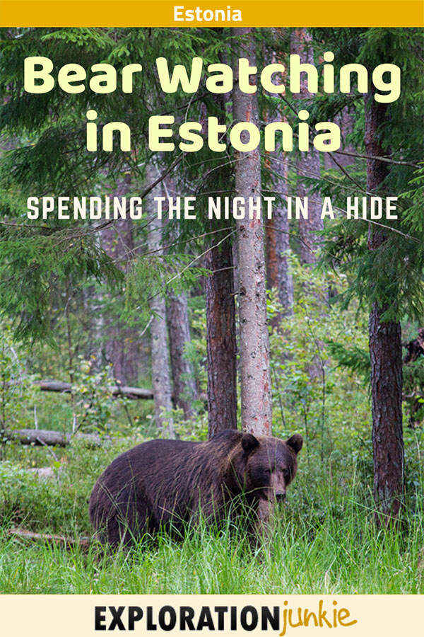 Bear Watching Estonia pinterest image