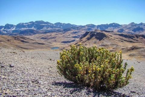 Tunari Peak Landscape