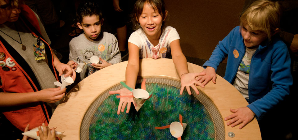 Exploratorium: South Gallery
