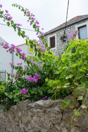 Kroatien Roadtrip:Ferienunterkunft