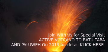 Our Expedition Volcano Active to Batu Tara