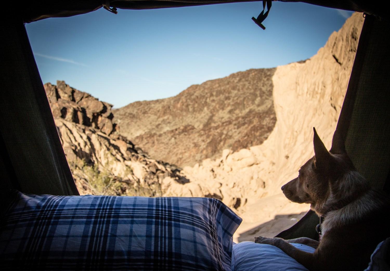 explore_desert_olddale_39