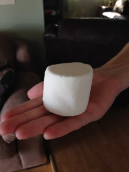 Giant Marshmallows