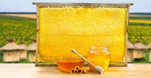 Learn 5 Things How World Best Honey Can Improve Your Health