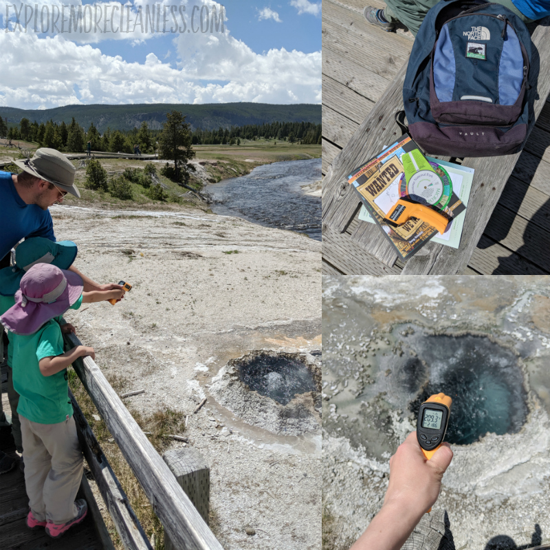 junior scientist program yellowstone