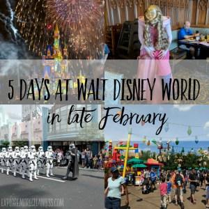 5 day Walt Disney World visit in late February
