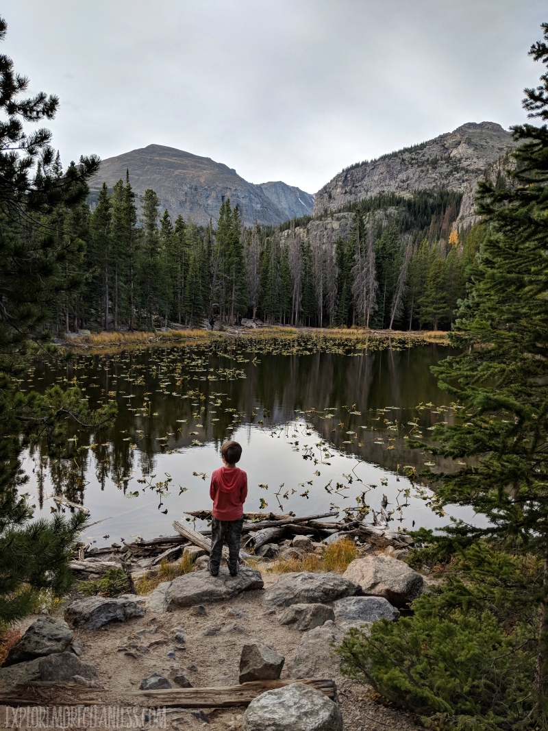 nymph lake rmnp