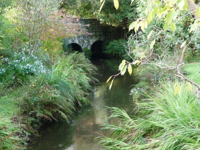 The Stream at Trewerry Mill
