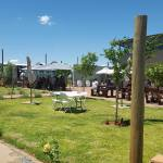 Dog and Fig brewery Parys
