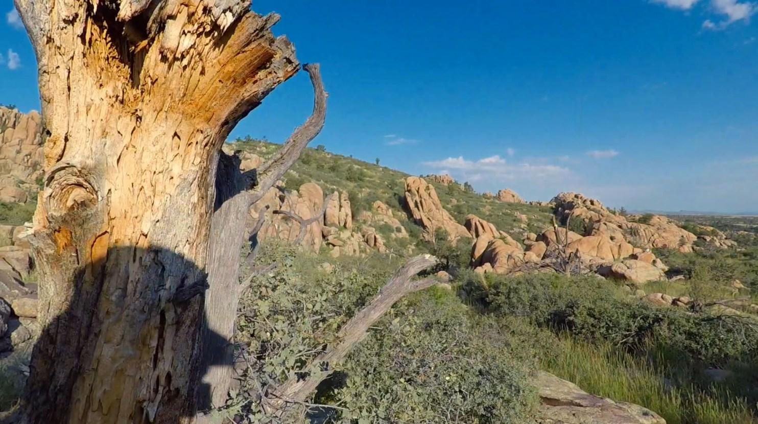 Constellation Trail Granite Dells Prescott Arizona Photographer Rich Charpentier