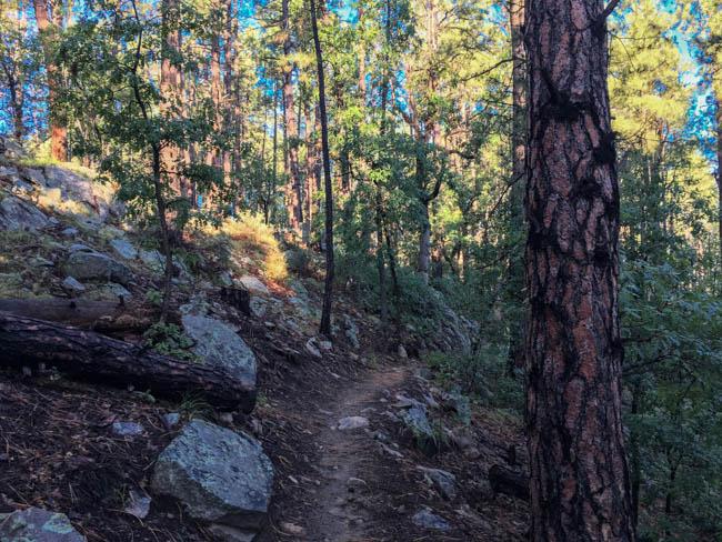 Hike in Prescott Arizona Circle Trail Goldwater Lake to White Spar Campground