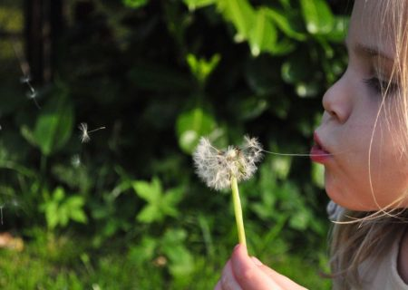 What is developmental psychology?