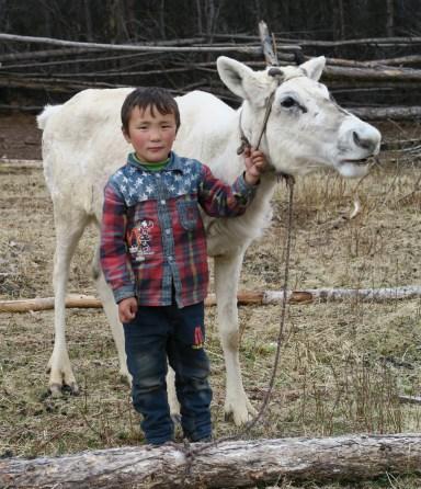 Enfant Tsaatan posant avec un renne albinos