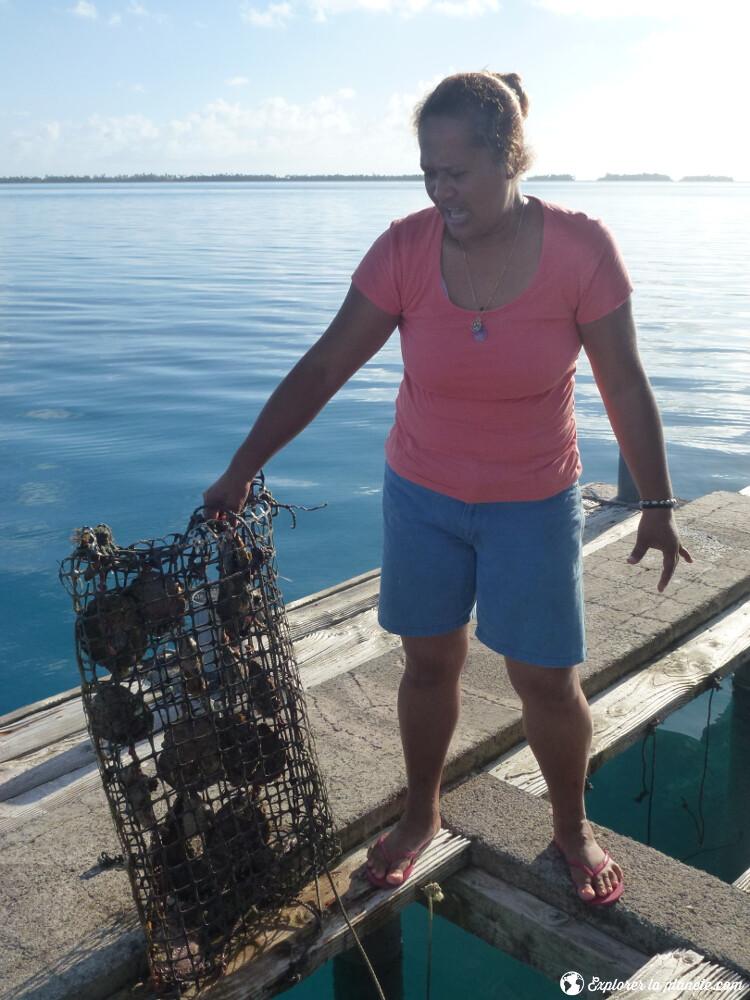 iles-visiter-polynesie-francaise-ferme-perliere-tahaa