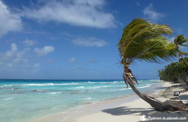 iles-visiter-polynesie-francaise-plage-fakarava