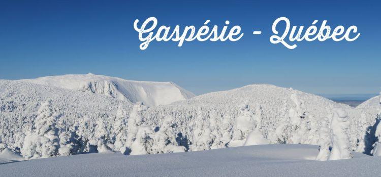 Randonnée au mont Logan dans le parc national de la Gaspésie (en hiver et en ski hok!)
