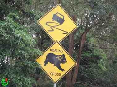 Koala bear Crossing sign board Australia