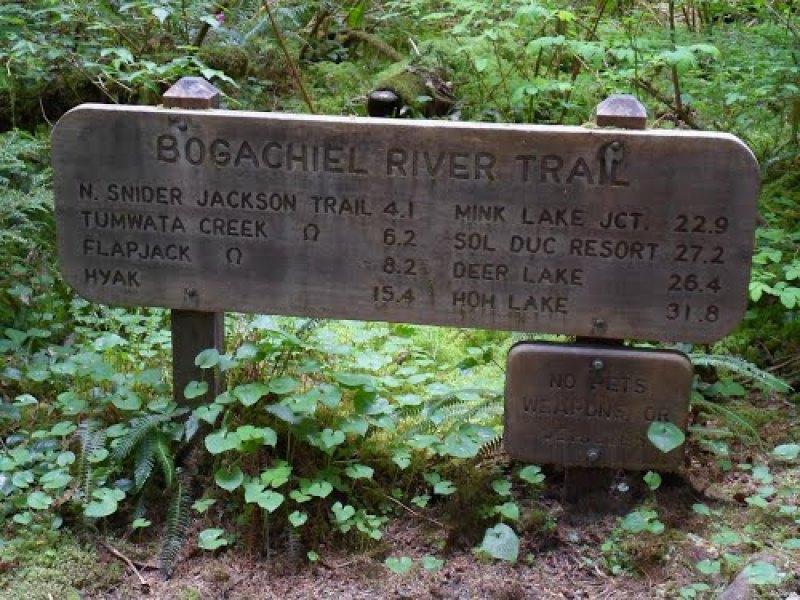 bogachiel-trail