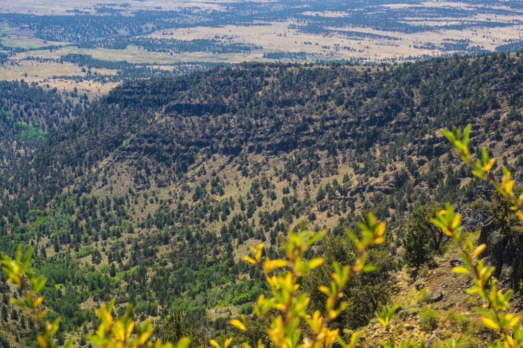Steens Mountain Loop