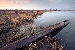 Ufer am Allier