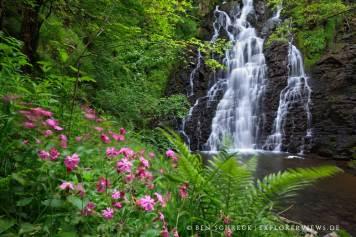 Cascade de la Roche 2420