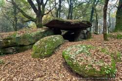Dolmen im Wald Bretagne