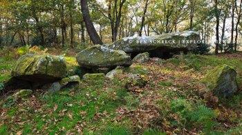 Mané Bihan - Allee couvert Carnac Bretagne