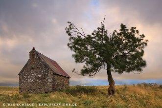 Steinhaus mit Baum Auvergne