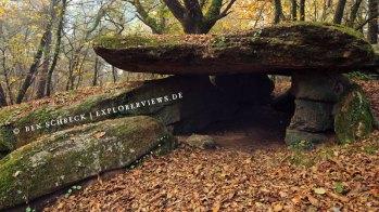 Dolmen im Wald