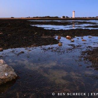 Tour Anglais Morbihan 8253