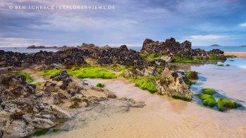Low tide rocks on the beach