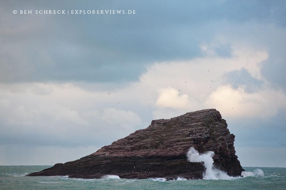 Wave Cap Frehel