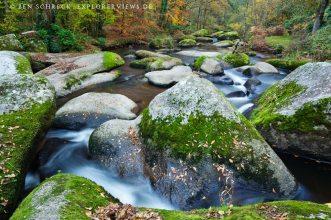 Chaos de Gouet Bretagne Forest
