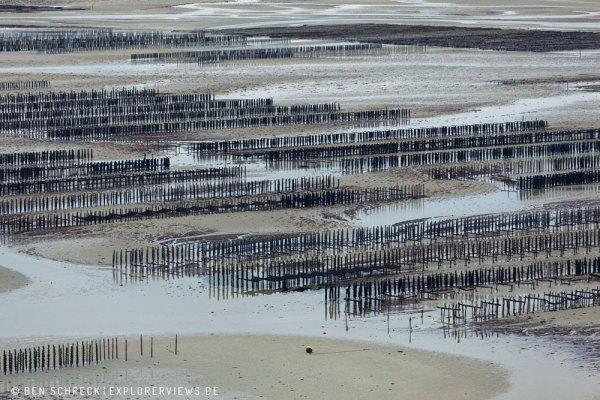 Muschelzucht Bretagne