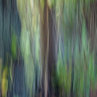 Baummalerei 3