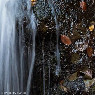 Wasserlauf Naturfoto